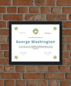 Cannabis Online Training
