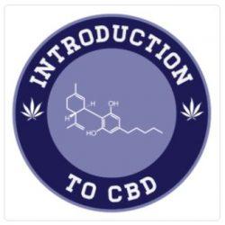 introduction to cbd